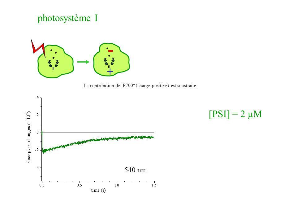 - + photosystème I [PSI] = 2 µM 540 nm